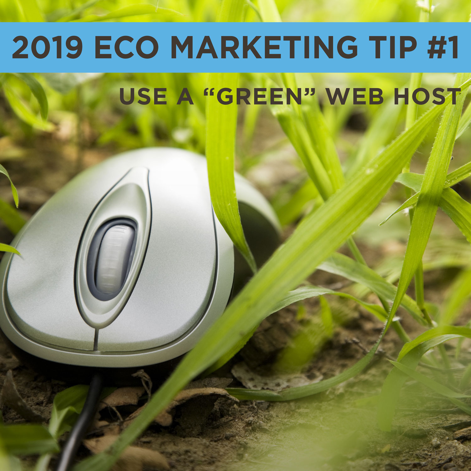 Eco Marketing Tip 1 is to use a green web host